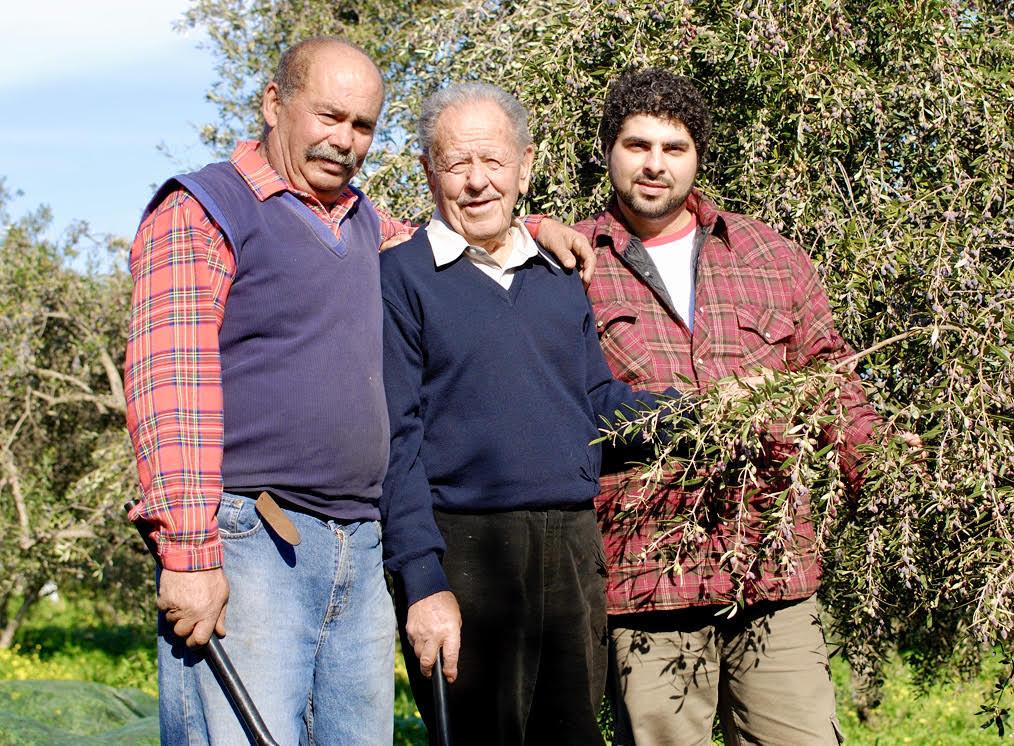 Acropolis_Organics_Olive_Harvest_Family_Tradition